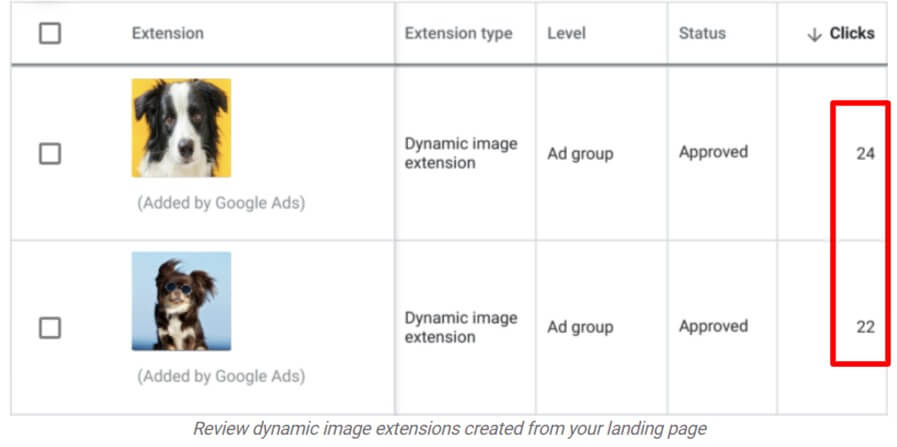 Google Ads Dynamic image extension